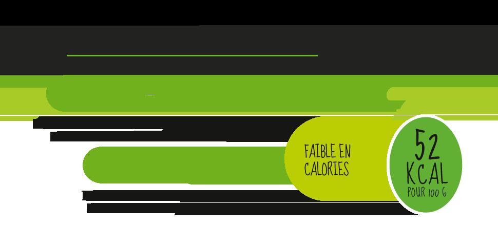 nergi.info3_fr